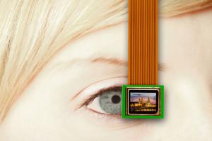 Mikrodisplays sind kaum größer als das menschliche Auge. Ein neues günstiges Verfahren lässt sie jetzt deutlich heller strahlen. (© Fraunhofer COMEDD)
