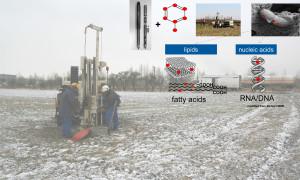 In-situ Beprobung der mikrobiellen Schadstoffabbauaktivität im Rahmen einer Standorterkundung ohne Grundwassermessstellen /  Foto und Fotomontage: UFZ