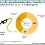 Biokraftstoffanteil am globalen Getreideverbrauch