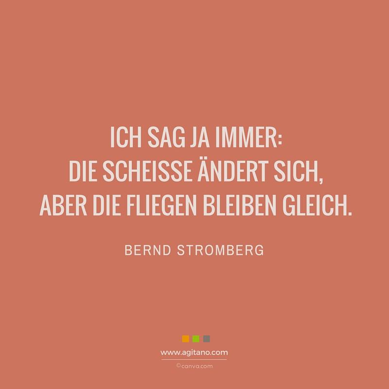 Scheisse, Fliegen, Spruch, Bernd Stromberg, Leben, Management, Alltag