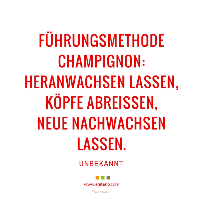 Führungsmethode, Champignon, Arbeit, Humor
