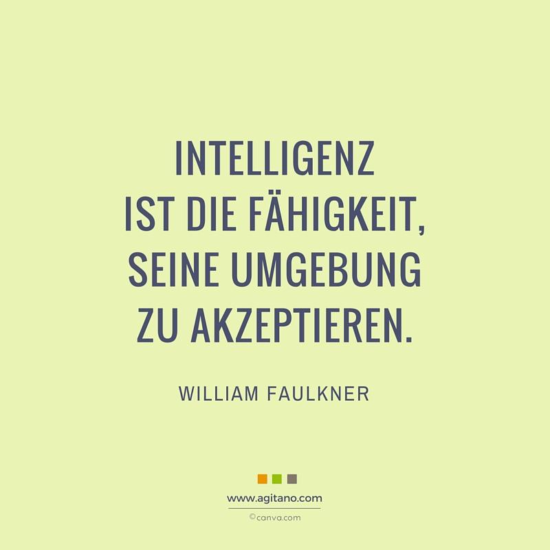 Intelligenz, Fähigkeit, Erfahrung, Umgebung