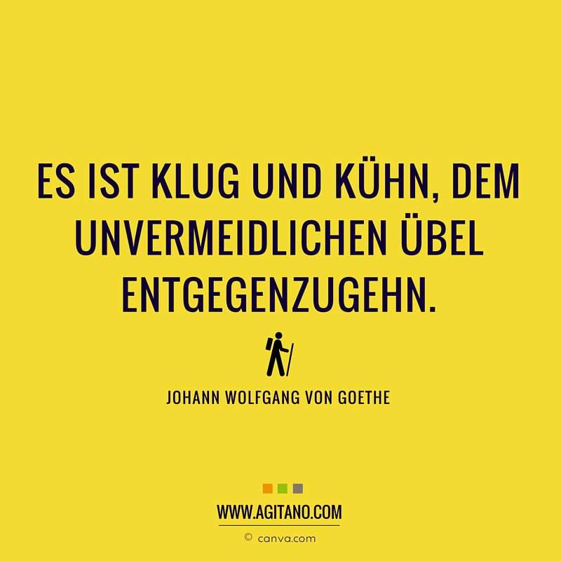 Johann Wolfgang Von Goethe Es Ist Klug Und Kühn Agitano