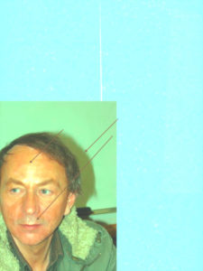 Bearbeitetes Portrait von Michel Houellebecq