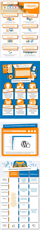 Infografik zu den Funktionen und Hostingloesungen für WordPress