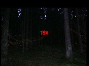 Foto von einem dunklen Wald mit der roten Aufschrift 120