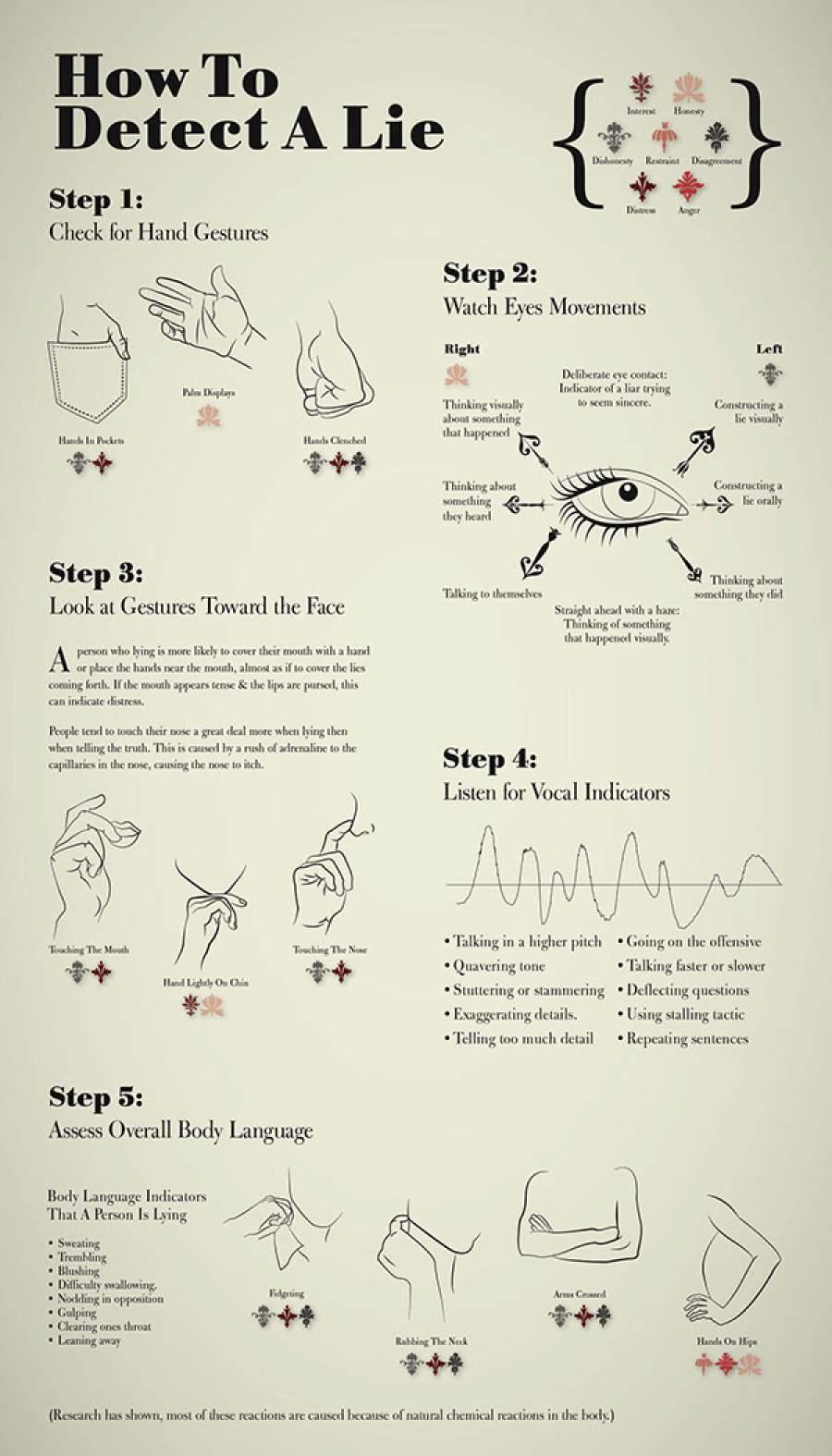Infografik zum Thema Luegner entlarven