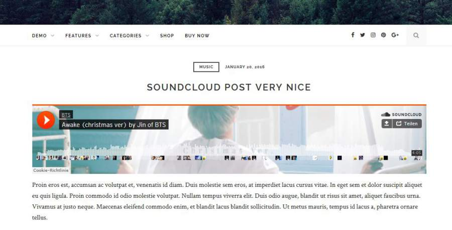 Newsfeed, Fooze WordPress Theme, Fooze
