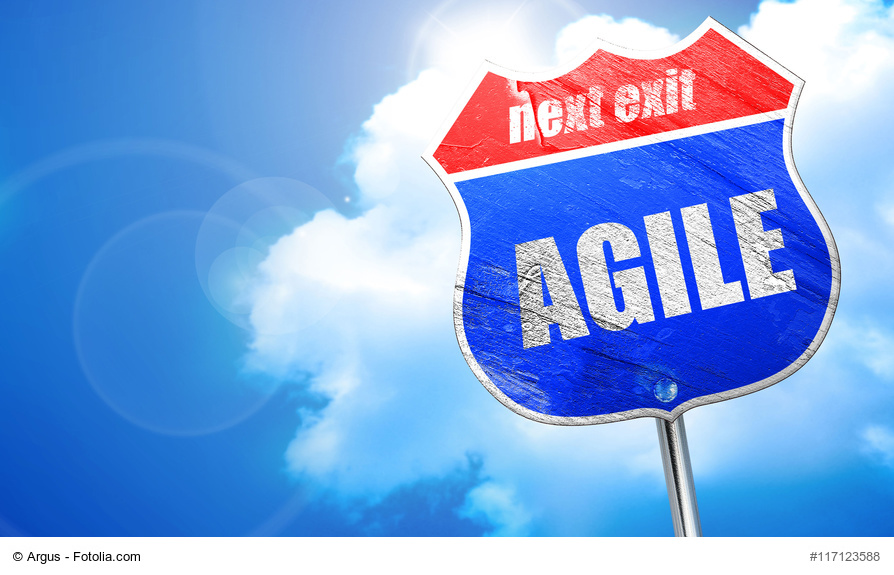 agilität, agile management, agiles projektmanagement