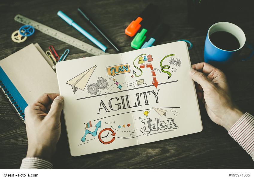 agile management, agiles projektmanagement, agilität