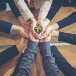Viele Menschen sitzen gemeinsam an einem Holztisch und umfassen gemeinsam einen Blumentopf, in dem eine kleine Pflanze wächst.