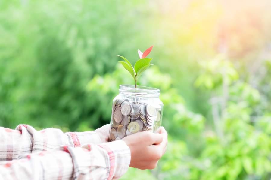 Menschliche Hände in FLanellhemdsärmeln halten großes volles Glas voller Münzen mit einem Blütentrieb, der aus dem Geld herauswächst, grüner verschwommener Hintergrund, der auf einen gesunden Wald schließen lässt