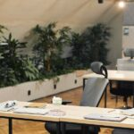 Ergonomische Bürostühle in einem Mehrpersonenbüro an Schreibtischen mit Unterlagen, im Hintergrund einige Pflanzen
